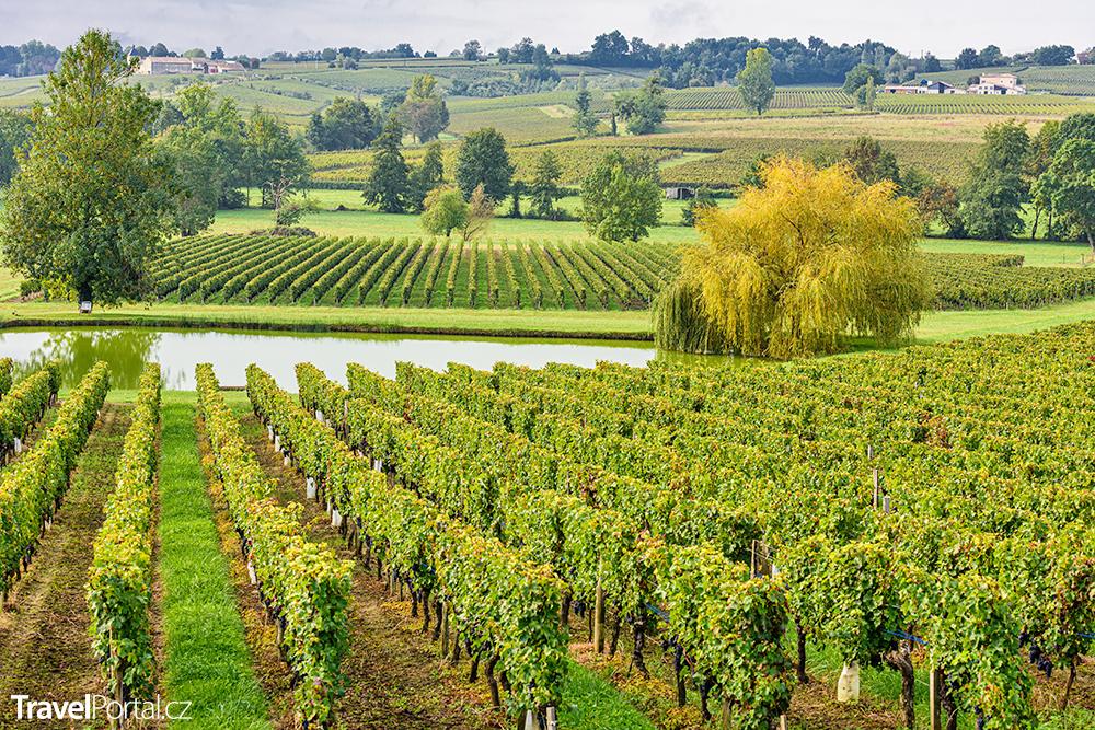 vinice v okolí města Bordeaux