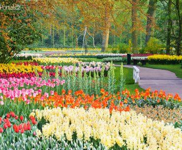 Velikonoce 2020 aneb nizozemský park Keukenhof