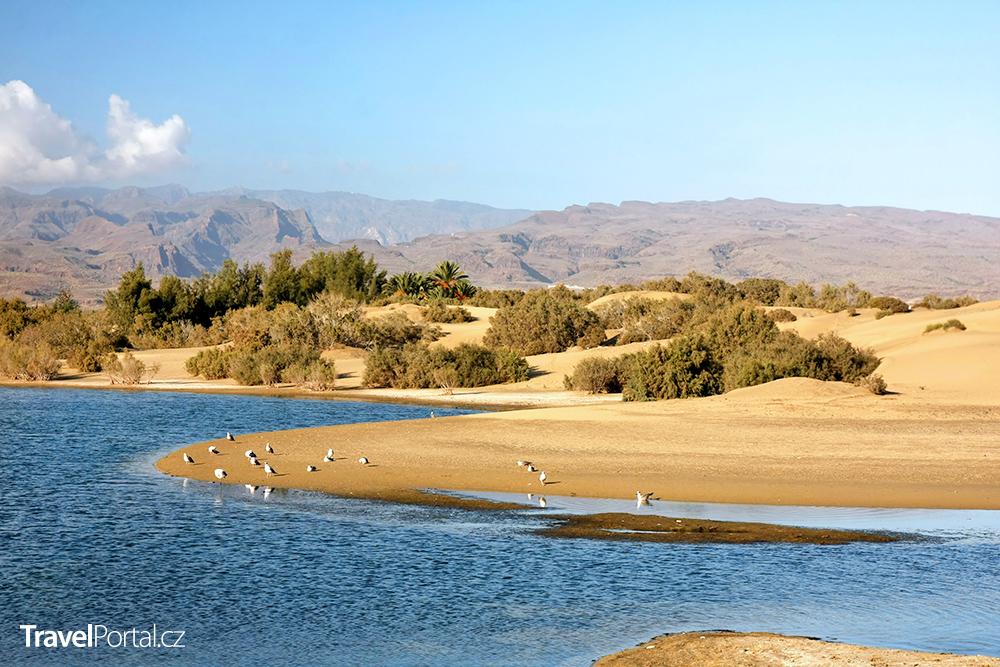 přírodní rezervace Dunas de Maspalomas
