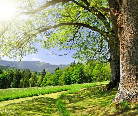 Dovolená v ČR: Deset tuzemských lokalit, kde lze v létě skvěle relaxovat