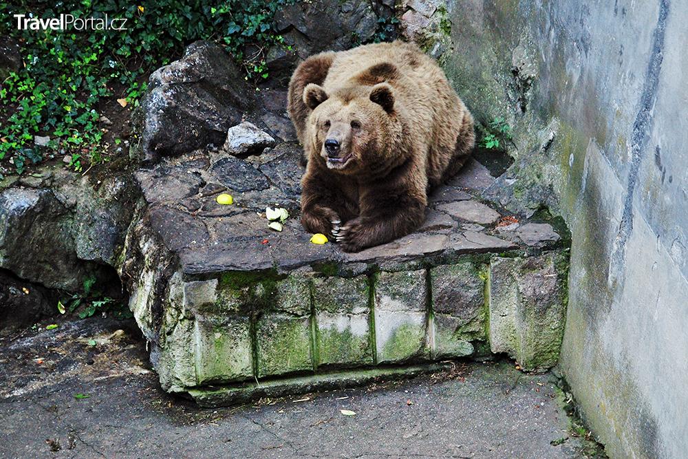 Medvědí příkop na zámku Český Krumlov