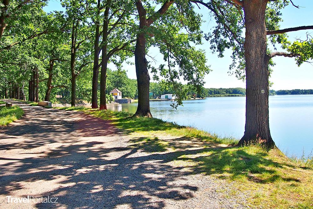 turistická a cyklistická stezka podél rybníka Dvořiště