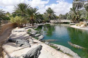 Djerba Explore Park